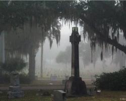 Moonlight Walking Tour at Greenwood Cemetery