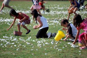 Marshmallow Drop in Oviedo