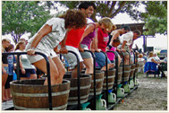Harvest Festival at Lakeridge Winery