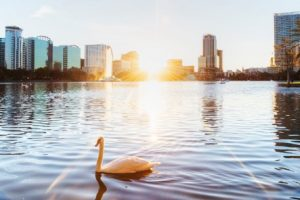 Things to do this fall in Orlando