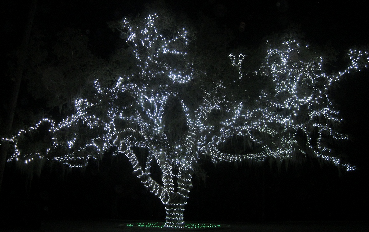 Holiday Lights Drive Through in Moss Park - Orlando on the Cheap