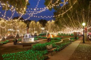 Orlando Christmas lights: image of white lights in downtown Mount Dora