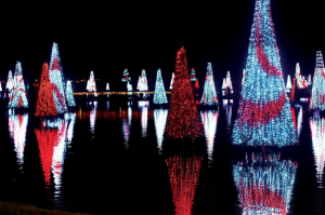 SeaWorld Orlando Christmas