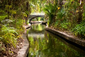 Things to do Orlando: image of beautiful canal on Winter Park Scenic Boat Tour.