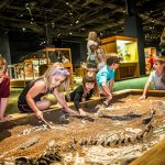 Orlando cool indoor spots to take the kids on a rainy day