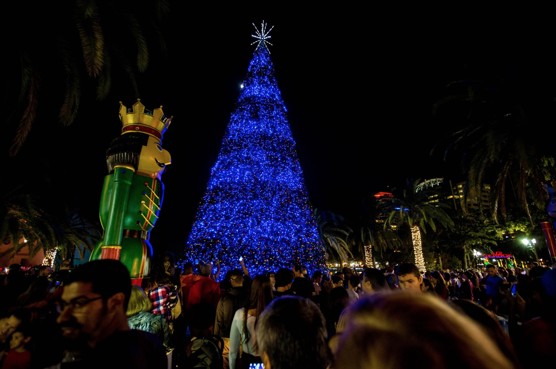 Tree lighting: image of Christmas tree lighting ceremony in downtown Orlando