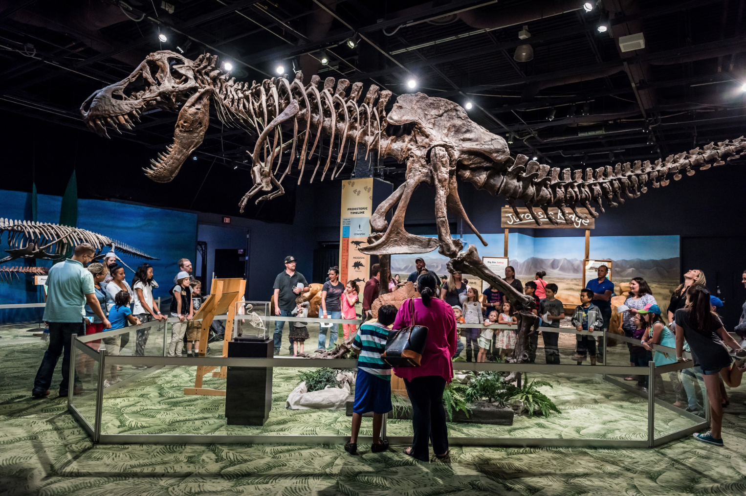$10 Day at Orlando Science Center: image of people looking at T-Rex skeleton