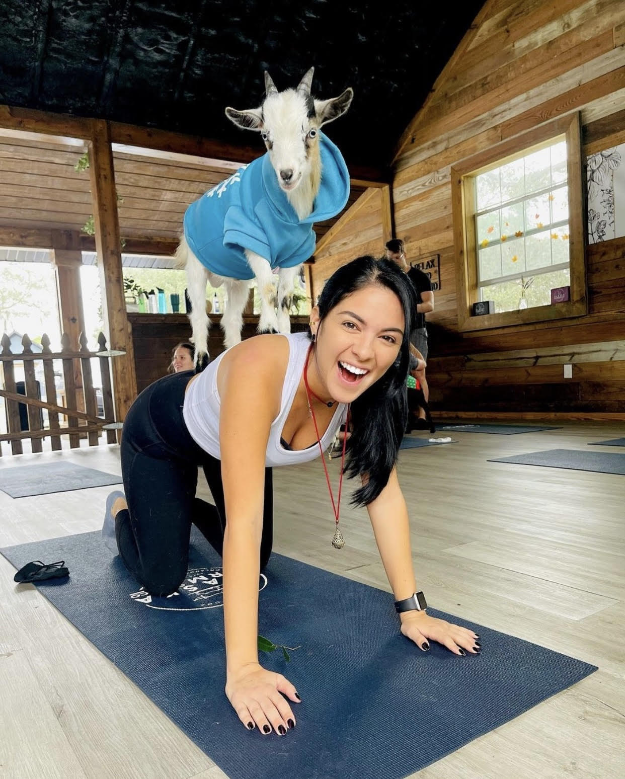 Things to do this weekend in Orlando: image of woman doing yoga with a mini goat at Alaska Farms