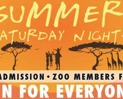 Brevard Zoo Summer Saturday Nights